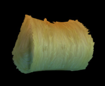 Wildstar Housing - Hay Bale (Large)