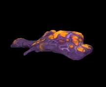Wildstar Housing - Strain Slime