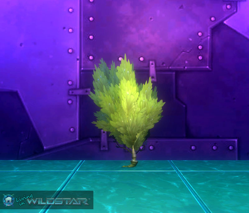 Wildstar Housing - Bushberry (Tall)