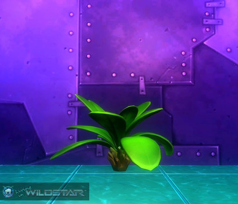 Wildstar Housing - Succulent Palm (Full)