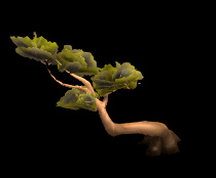 Wildstar Housing - Algoroc Bent Tree