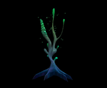 Wildstar Housing - Poison Spore Tree