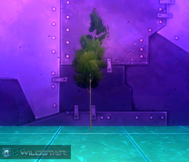 Wildstar Housing - Spindly Tree